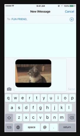 Send a GIF via Text