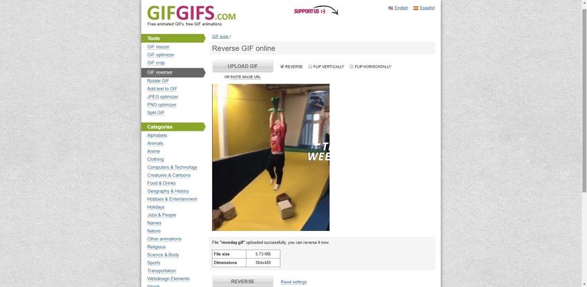 Reverse GIF Image-GIFGIFS