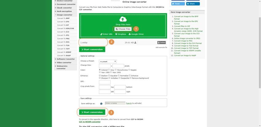 Convert WebM to GIF-Online-Convert