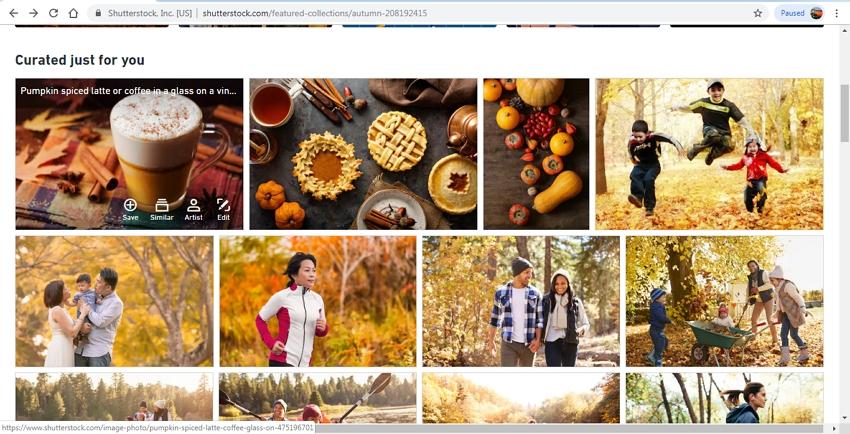download JPEG images-Shutterstock