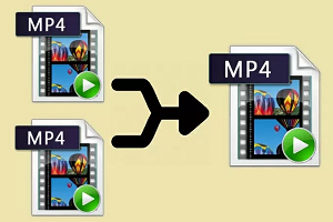 Learn to Merge MP4 Online Quickly