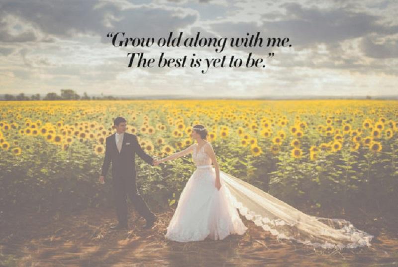 wedding slideshow quote ideas