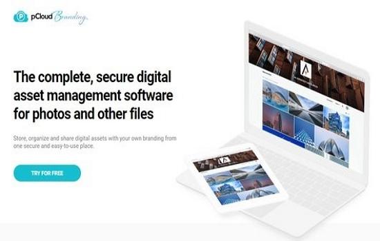 free digital asset management software