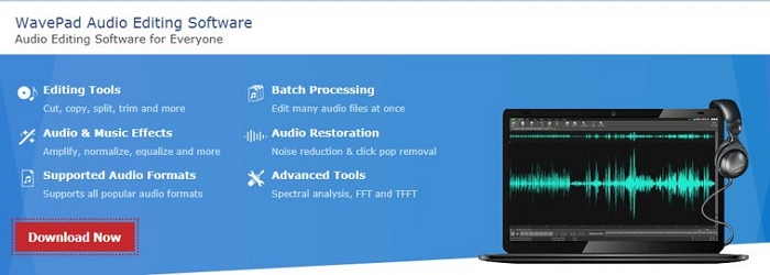 good cvocal remover software