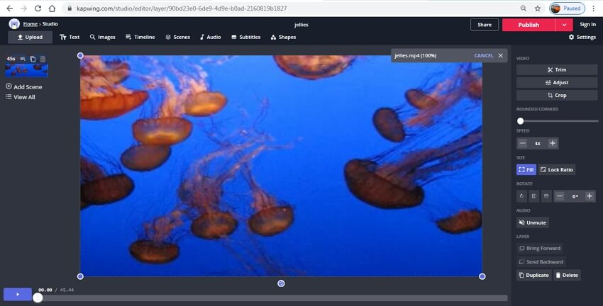 remove audio from video online - Kapwing